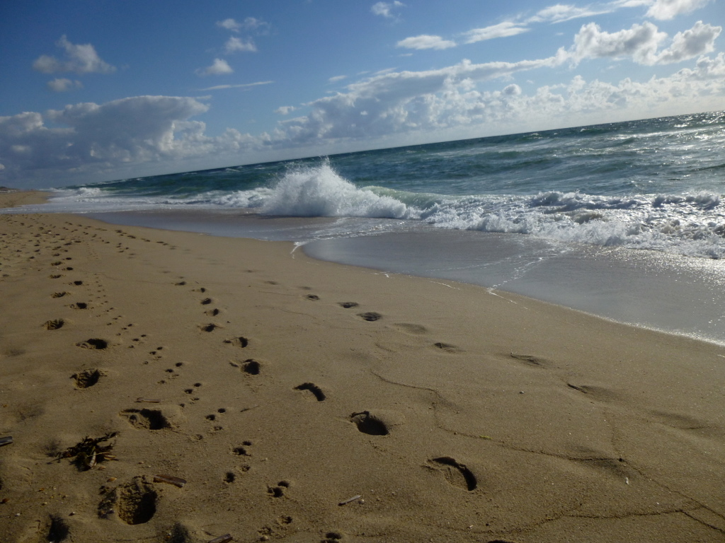 Sylt-Spuren im Sand-Strand-Meer